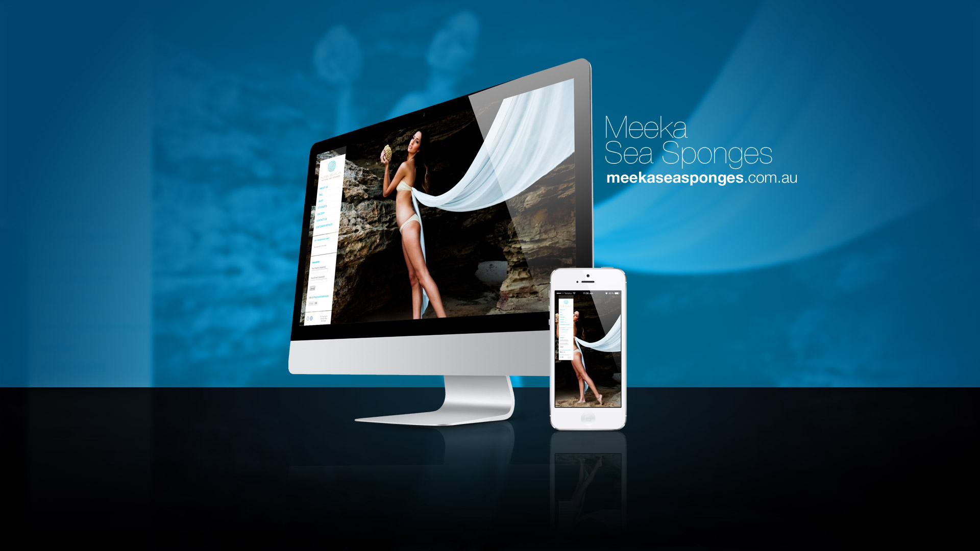 wordpress-website-design-melbourne_0018_meeka